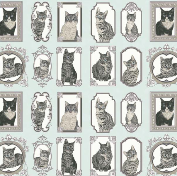Cats the Way I Like It
